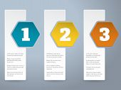 White Label Infograhic With Big Color Hexagons