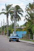 Old Fashioned Car parked through palms