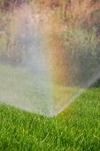 image of swales  - sprinkler watering the green grass on a sunny summer day - JPG