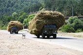 Hay transportation