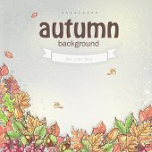 Image of autumn background with leaves, chestnuts and acorns.