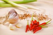 picture of scallion  - Red hot chilli peppers with a scallion and garlic on a wooden board - JPG