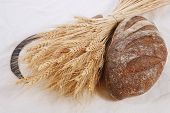 stock photo of reaper  - bunch of mown wheat ears with vintage handmade reaper hook sickle and rye dark french fresh bread loaf on white linen tablecloth - JPG