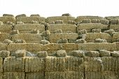 stack of straw -