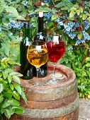 Glasses and bottles of wine on old barrel in a garden