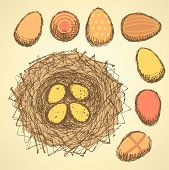 Sketch Nest With Eggs In Vintage Style