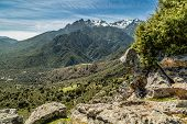 stock photo of wispy  - View from Sentier Ile Rousse  - JPG