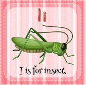 stock photo of cricket insect  - Flashcard letter i is for insect - JPG