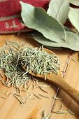 picture of bay leaf  - Wooden spoonful of dried rosemary and bay leaf - JPG