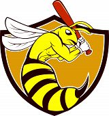 image of bat  - Cartoon style illustration of a kiiller bee baseball player holding bat batting viewed from the side set inside shield crest on isolated background - JPG
