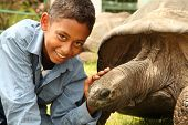 School boy with giant tortoise
