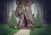 Fairy Tree House In Fantasy Dark Forest poster