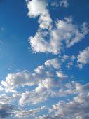 Cielo azul #4