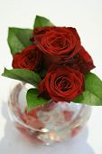 Romantic red roses centerpiece arrangement