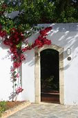 White wash stone house with arch door entrance and bougainvillea growing by the wall.