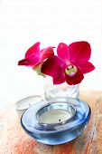 Red oriental orchid in glass vase with aromatherapy candle, part of health and beauty spa setting.