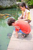 Hallo kleine Schildkröte. Kleiner Junge und seine Schwester, eine junge Schildkröte zu bewundern, wie es ihnen gegenüber schwimmt Beats