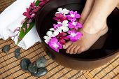 stock photo of wet feet  - Feminine feet in orchid spa bowl with hot stones - JPG