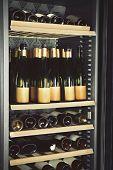 Wine bottles cooling in refrigerator poster