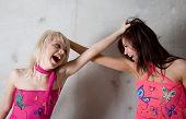 two beauty girls in pink dress fighting