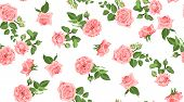 Seamless Flower Pattern. Vintage Watercolor Roses With Green Leaves. Floral Decorative Seamless Back poster