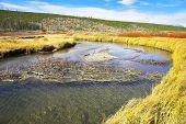 Twisting small stream on flat marshy plain