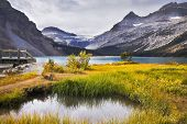 stock photo of rocky-mountains  - Overgrown a yellow grass shallow lake in rocky mountains - JPG