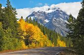 Autumn in Canada. The road abruptly turns among trees with yellow and orange foliage