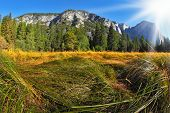 Grandiose landscape in a valley world-wide well-known Yosemite park. Sunrise, autumn poster