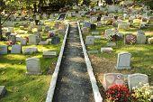 pic of crematory  - Hartsdale Pet Cemetery - JPG
