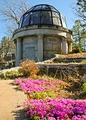 Percival Lowell grave