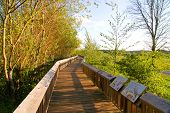Nisqually National Wildlife Refuge  boardwalk