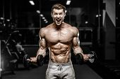 Handsome Strong Athletic Men Pumping Up Muscles Workout Barbell Curl Bodybuilding Concept Background poster