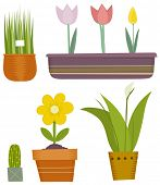 vector illustration of flowers set