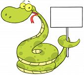 Snake Cartoon Character Holding Up A Blank Sign