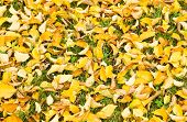 Background Yellow Fallen Elm Leaves In Fall