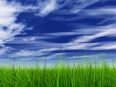 HIGH RESOLUTION 3d green grass over a blue sky with clouds
