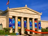 Shedd Aquarium Chicago Illinois