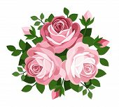 Three pink roses. Vector illustration.