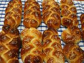 challah bread for shabbat kodesh