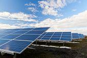 Paneles de energía solar fotovoltaica