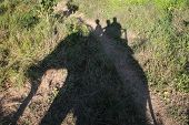 Elephant Ride - Nepal