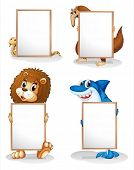 Illustration of the four animals with empty whiteboards on a white background