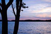 Bugs Island Sunset