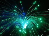 Fiber Optics Lights Nights