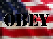 The ominous words OBEY in black block over white on a pixelated American flag. The perfect protest i