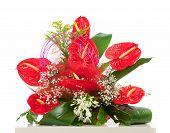 Basket Of Red Anthurium Flowers
