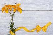 Floral frame from flowers yellow lily and ribbons