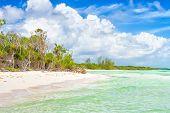 Idyllischen tropischen Strand mit türkisfarbenem Wasser und Bäumen in der Nähe von Wasser auf Cayo Coco (Coco Schlüssel) in Kuba