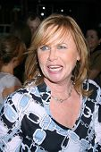 Amy Madigan  At the Los Angeles premiere of 'Appaloosa'. Samuel Goldwyn Theatre, Beverly Hills, CA. 09-17-08